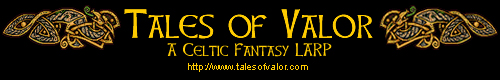 Tales of Valor LARP